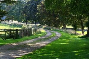 Notgrove Holidays driveway