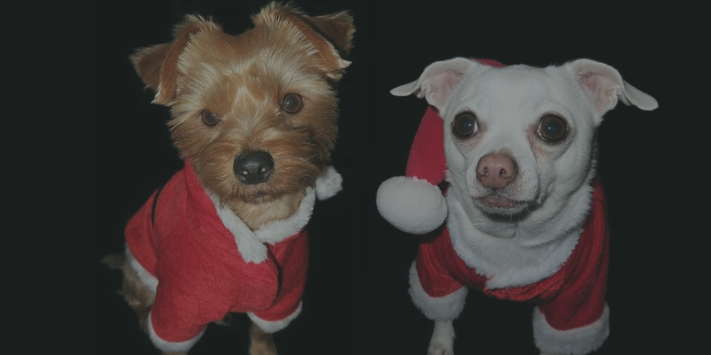 Peppa and Scrappys Christmas List