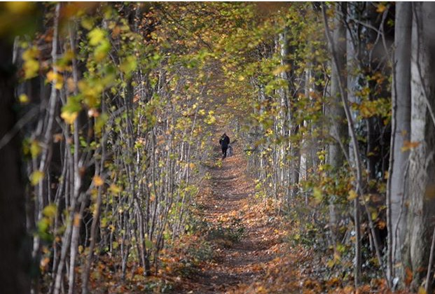 Walking in Notgrove
